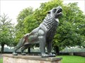 Image for Maschsee Lions