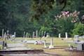 Image for Macedonia Baptist Church cemetery - Oxford, GA