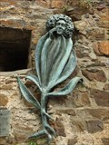 "Image for ""Valeriana"" in Ahrweiler - RLP/ Germany"