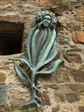 "Image for ""Valeriana"" in Ahrweiler - RLP/ Germany"