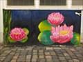 Image for Water Lilies - Neustadt an der Weinstraße, RLP, Germany