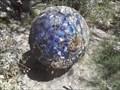 "Image for ""The Blue Planet"" - Xeriscape Garden - Glendale AZ"