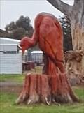 Image for Vulture - Cressy, Victoria, Australia