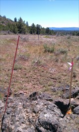 View of benchmark looking south along 140 and towards the witness post of MAY triangulation station mark.