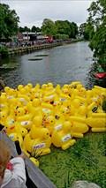 Image for Red Cross Duck Race - Beilen NL