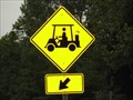 Image for Golf Cart Crossing - Warriors Path State Park