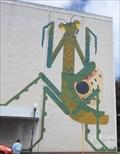 Image for Praying Mantis - Fremantle, Western Australia