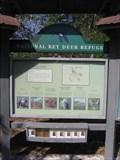 Image for The Blue Hole - National Key Deer Refuge