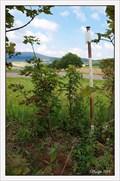 Image for TB 2518-4 Na kopci III jz., CZ
