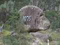 Image for Dog-gone Rock - Tenterfield, NSW