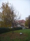 Image for Strom Milenia (Lipa srdcita) - Slapanice, Czech Republic