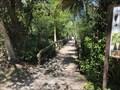 Image for Big Cypress Bend Boardwalk - Copeland, Florida, USA