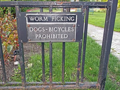 Roses require good mulching. Good mulching is attractive to worms. Ample worms attract those seeking bait. Hence the sign. Not terribly formal, but it