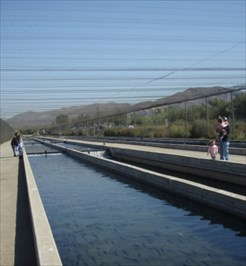 Fillmore fish hatchery fillmore ca fish hatcheries on for California fish hatcheries