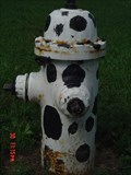 Image for Hasselroth Hydrant