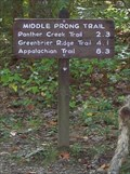 Image for Middle Prong Trail - Great Smoky Mountains National Park, TN