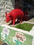 Image for University of Arkansas Razorbacks - Fayetteville AR