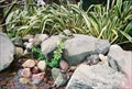 Image for San Francisco Zoo - Binnowee Landing Fountain