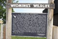 Image for Wildland Diversity -- I-25 Exit 7/US 18 Rest Area, nr Orin WY