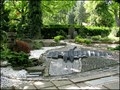 Image for Botanicka zahrada / Botanical garden, Plzen, CZ