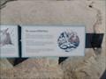 Image for Seasons of Bird Rock  -  Pebble Beach, CA