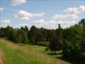 Image for Sywell Country Park Arboretum - Northamptonshire, UK