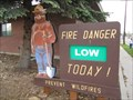 Image for Ashley National Forest Smokey the Bear - Vernal, Utah