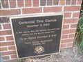 Image for Horry County Centennial Time Capsule - Conway, South Carolina