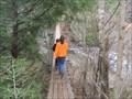 Image for Cane Creek Falls Swinging Bridge