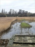 Image for WaterWorks Nature Reserve - Leyton, London, UK