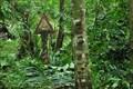 Image for EN 1 - Sao Tome and Principe