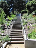 Image for Buena Vista Park Stairway - San Francisco, CA