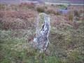 Image for W B Stone, near Firth Bridge, Dartmoor.