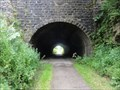 Image for Newhaven Tunnel - Parsley Hay, UK
