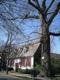Image for Second Oldest Black Oak in NJ - Haddonfield, NJ