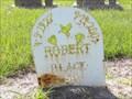 Image for Robert Black,  Sr. - Eagle Lake Community Cemetery North, Eagle Lake, TX