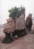 Image for Hopewell Rocks, Walk Into The Bay of Fundy - NB, Canada