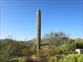 Image for 110th Street Cell Tower - Carefree, Arizona