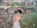 Image for Bonnie's Bridge