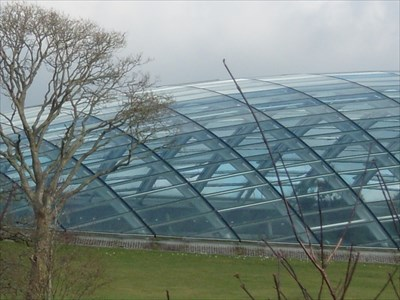 LARGEST - Single-span glasshouse in the World