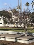 Image for Sakura Grove - San Diego, CA