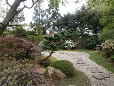 Japanese Garden in Prague Botanic Garden