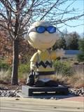 Image for Dr. Charlie Brown - Santa Rosa, CA