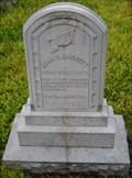 Image for John C. Baggott - Cobden Cemetery - Cobden, Ill.