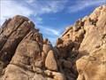 Image for Joshua Tree National Park - Joshua Tree, CA