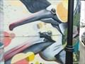 Image for Pelicans - Galveston, TX
