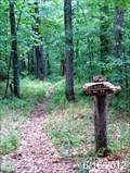 Image for Horton Trail - Seneca Creek Backcountry - Monongahala National Forest - Whitmer, West Virginia