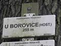 Image for 255m - U borovice (host.) - Brno, Czech Republic