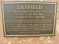 Image for MHM Lilyfield - Lilyfield MB