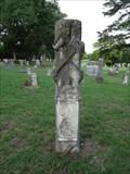 Image for Jim Ned Penton - Rosston Cemetery - Rosston, TX